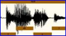 Hang azonosító beléptető rendszer