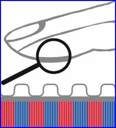 EKEY ujjlenyomat azonosító beléptető rendszer