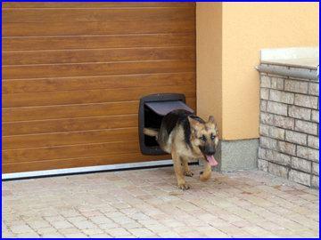 Beépíthető kutyabejárat a házi kedvenceknek