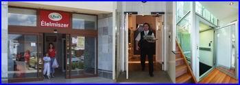 DITEC toló automata ajtó, szárnyas automata ajtó, ajtónyitó, üvegportál, akadálymentesítés.